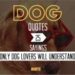 dog-quotes-25-best
